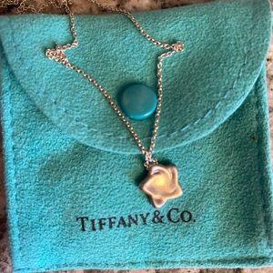 Tiffany & Co. Elsa Peretti Mini Silver
